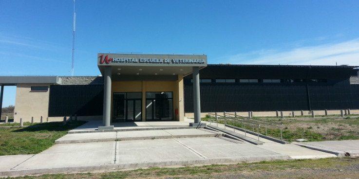 hospital-escuela-veterinaria-unrn